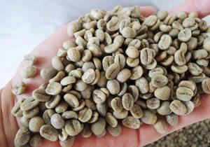 ☆出店紹介☆TSUKIMI COFFEE(ツキミコーヒー)- コーヒー販売 -